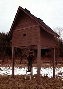 16 Best Bat Houses images | Bat house plans, Bat box, Bird ... Large Bat House Plans on large workbench plans, large barn plans, large chicken tractor plans, large worm bin plans, large pergola plans, large bat doors, large bat clip art, sears craftsman style house plans, grey squirrel house plans, large picnic table plans, large bats in philippines, finished basement ranch floor plans, box wood duck house plans, bat box plans, bat shelter plans, large animals, hummingbird house plans, large cupola plans, large carport plans, butterfly house plans,