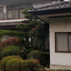 Aesthetic Japan, Night Aesthetic, Nature Aesthetic, City Aesthetic, Aesthetic Photo, Aesthetic Pictures, Estilo Grunge, Beautiful Places, Scenery