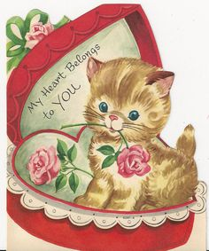 100's of valentines pins on this board ~ )  kitten