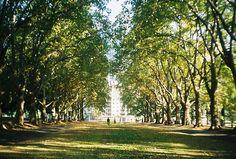 Melbourne Gardens