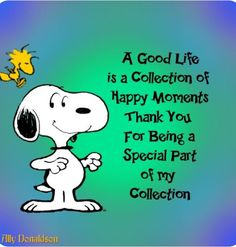 Snoopy good life, thanks for being part of my collection Charlie Brown Quotes, Charlie Brown And Snoopy, Peanuts Quotes, Snoopy Quotes, Cuadros Star Wars, Snoopy Pictures, Snoopy And Woodstock, Peanuts Snoopy, Peanuts Cartoon