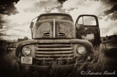 Image detail for -Old-Ford-Truck