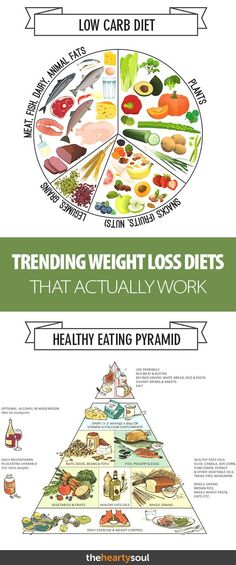 Are you eating Whole Keto or Paleo? Many trendy diets that are sweeping the internet right now are actually based in solid nutritional science- here's our list of the currently trending diet programs and philosophies that actually work! Gain Weight Fast, Start Losing Weight, Healthy Weight Loss, Healthy Eating Pyramid, Healthy Habits, Healthy Foods, Best Diet Drinks, Plus Populaire, Weight Loss Smoothies