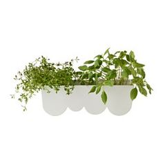 IKEA - ÄGGPLANTA, Planter, It's possible to plant directly into the planter, or to place potted plants inside.
