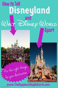 Help researching a paper about Walt Disney World?