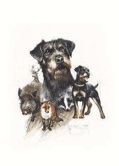 Hog Hunting, Hunting Art, Hunting Themes, Terrier Dog Breeds, Pitbull Terrier, Turkey Hunting Season, Hog Dog, Wire Haired Dachshund, Watercolor Print