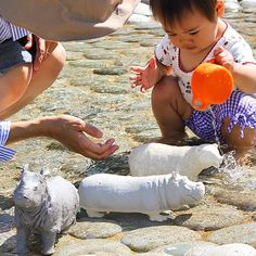 """Modern in Wilderness """"sai,kaba,shirokuma"""" Animals having a bath."""