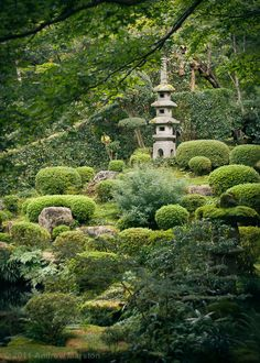 Sanzenin Temple is renowned for its lush mossy grounds dotted by ancient buildings and gardens.