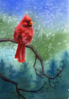 Watercolor Paintings of Birds | WATCH watercolor bird painting by Barbara Fox, original painting ...