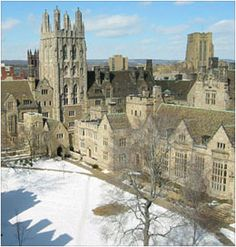 Yale University is a beautiful campus made up of cathedral-like buildings and victorians. We went there to see the musical instrument museum and the Gutenburg Bible.