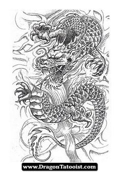 The 756 best dragon tattoo designs images on pinterest in 2018 dragon japanese tattoo dragon tattoo oriental chinese dragon tattoos free tattoo designs maxwellsz