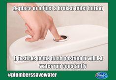 #watersaving #Toilet #Flush #Pimlico #Plumbers #Lambeth #Meme