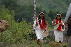 Koguis Etnias Indigenas de la Sierra Nevada de Santa Marta en Valledupar…