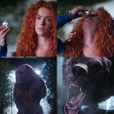 "Merida - 5 * 6 ""The Bear and The Bow"