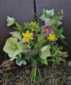 Lock Cottage Flowers, Surrey UK: spring posy all homegrown; http://lockcottageflowers.wix.com/lockcottageflowers
