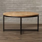 Found it at Wayfair - Eurig Coffee Table