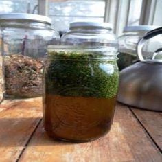 There is deep nutrition in weedy herbal infusions that can fill a glaring gap in our modern, processed diets. As a passionate herbalist and vegetarian who's endeavored to paying close attention to the nutrients in my diet, I found myself wondering: Can nourishing herbal infusions replace a daily multivitamin