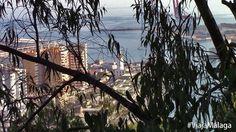 Desde el mismo, encontraremos las vistas más famosas de la ciudad de Málaga.
