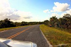 Daily Driv6n: USA Special Teil II: Das Tagebuch einer unvergesslichen Urlaubsfreundschaft Chevrolet Camaro, Nevada, Mustang, Country Roads, Usa, Daily Journal, Vacations, Mustangs, Chevy Camaro