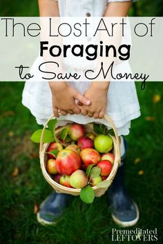 The Lost Art of Foraging to Save Money- Foraging for food has long been used as a way to save money. Keep these helpful tips in mind before giving it a try.