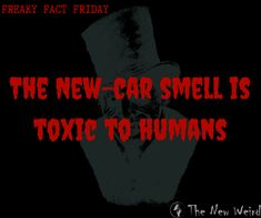 www.thenewweird.co.uk The new car smell is toxic to humans