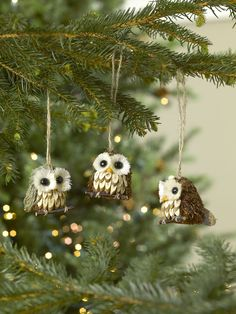 Owl Ornaments for the Nature-Lovers on Your List                                                                                                                                                                                 More