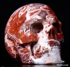 Lace Jasper Crystal Skull Rocks And Gems, Crystal Skull, Gems And Minerals, Skull Art, Fossils, Mother Earth, Skulls, Jasper, Bones