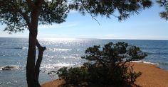 """GODITI LA BARCA tra Ibiza e Formentera dormendo comodamente in appartamento! (""""Che bello! Letto comodo, doccia calda ed asciugacapelli!"""") Formula UNICA >> """"B""""arca + """"A""""ppartamento! Loro nelle discoteche, noi navigando classico! Ci siamo chiesti: perché non godere delle bellezze di queste isole... con spirito marinaro ed ospitati da delle 'vere signore' del mare ma ... dormendo ben comodi in casa? Lasciamo pure agli altri le """"pazzie"""" che si vedono in giro e riprendiamoci il mare ed i l..."""