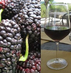Here's a HUGE list of easy home wine recipes!