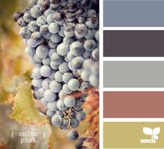 color pick...top color is color of my living room wall:)