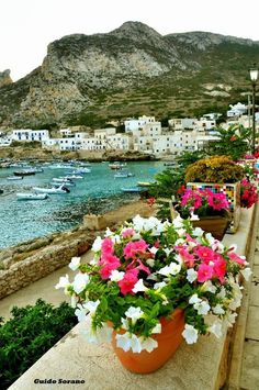 Levanzo, Sicily , Italy