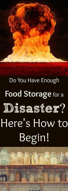 Food Storage: Basics You MUST Have to Start Your Food Storage Plan Off Right — Home Healing Harvest Homestead