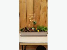 Edible Planter Workshop