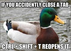 Actual Advice... What I want to know is why is it a picture of a duck?