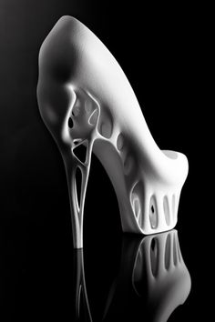 Ratsma and Spaho's 3D printed shoes highlights the aesthetics and used the shape of a bird's cranium for the front of the shoe, as well as the tapered beak as the spike of the heel. The structure of the hollow skull inspired the designers to utilize 3D printing for their design for optimal efficiency, strength and eleganc