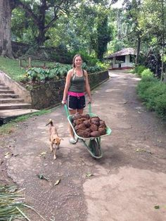 Moving Poop - Our Story - Aliya Dung Paper Eco Friendly Paper, Paper Supplies, Garden Tools, Elephant, Notebook, How To Make, Outdoor Power Equipment, Elephants, Exercise Book