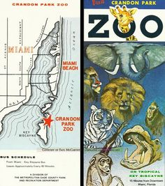 Crandon Park Zoo flyer, 1960's. This was Miami's original zoo, which I loved as a child.