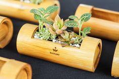 Wadiary Bambot - Bamboo Pot on Behance