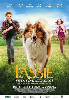 Vizionați Lassie Come Home Film Online Subtitrat in Romana pe Collie, Guinness World, New Class, Trailer, Second Best, Hit Songs, Save Her, Lassi, World Records