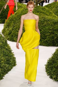 Christian Dior couture Spring 2013.