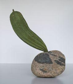 ikebana 2012