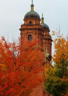 Downtown Asheville NC with fall color