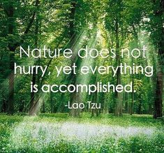 nature quote - Google zoeken