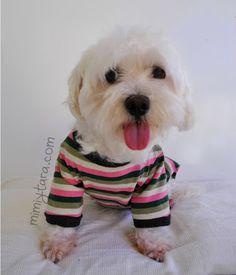 pijama perro delante