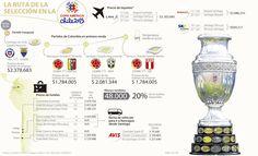 Ver la Selección Colombia en la Copa América de Chile 2015 le cuesta $14 millones