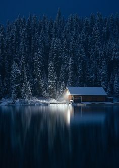 thisrusticlife: How we spent our Christmas (by calakmul) | Moons ...