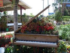 piano in garden | PIANO GARDEN (1)