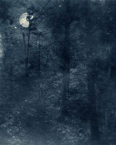 """Ted KINCAID - Nocturnal Landscape 811 2013 - Digitally Manufactured Photograph printed on Niyodo Kozu 44 g/m² - 20×16″ Edition of 3  from the portfolio """"12 Nocturnal Landscapes"""""""