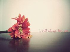 I will always love you.