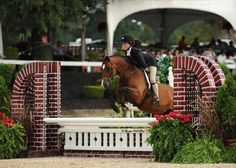 Daisy Farish and Redfield Farm's Sassafras Creek. Their overall score of 1035.50 in the Medium Pony division has earned them the 2013 Grand Hunter Pony Championship at the US #PonyFinals.
